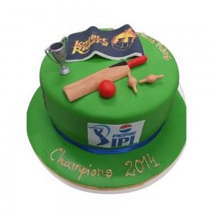 India Cricket Celebration Cake