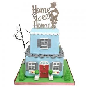 House Warming House Cake