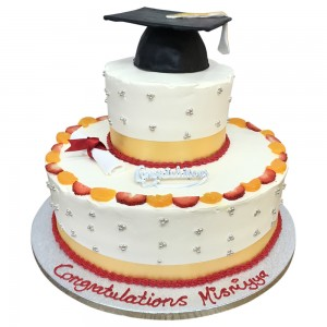 2 tier freshcream graduation cake