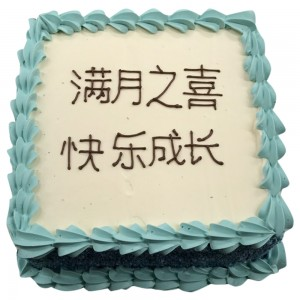 Chinese Inscription Freshcream cake